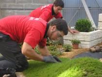 Olympiades des jardiniers paysagistes deux laur ats deux for Jardiniers paysagistes