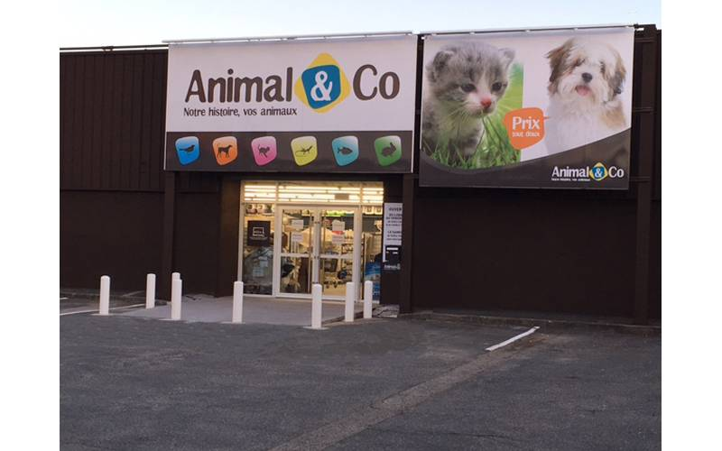 Animal & Co ouvre un 9e magasin à Anglet